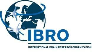 Logo IBRO